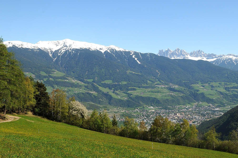 Spring in the Isarco Valley/South Tyrol – Flower magic in South Tyrol